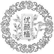 http://new-img1.ol-img.com/133/903/liyN8jtIRe6lo.jpg