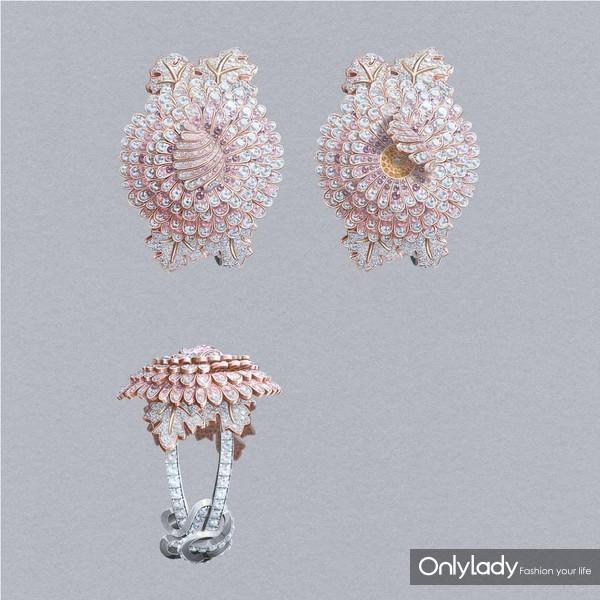 Uniques-Chrysantheme-01-BD-1