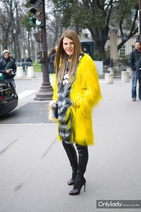 3661395e4f55976fbeba055915ab932b--anna-dello-russo-fur-coats