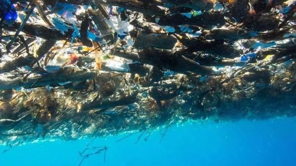 """海洋污染 英国bbc团队在 拍摄《蓝色星球2》的过程中就发现: """"不管"""