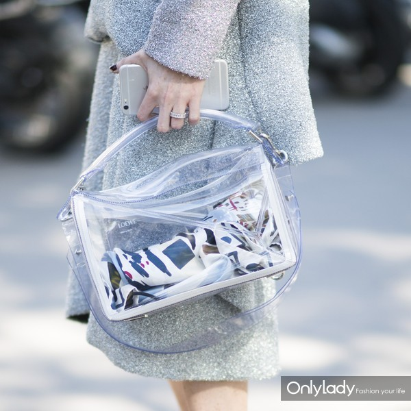 clear-bags-loewe-street-style-tout