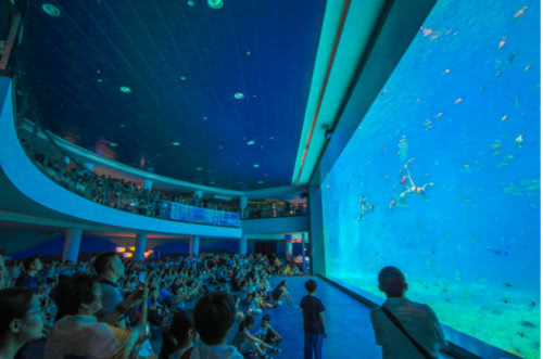 日照海洋公园盛大开园,携手2018中国·日照海洋狂欢季