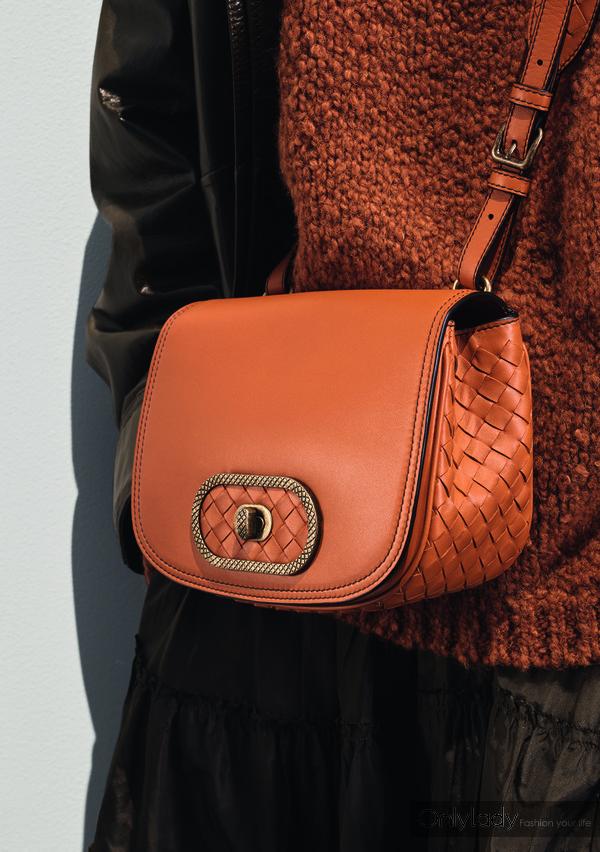 Bottega Veneta 橘色BV Luna手袋