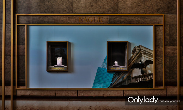 海瑞温斯顿Eagle系列黄钻配钻石耳环、戒指