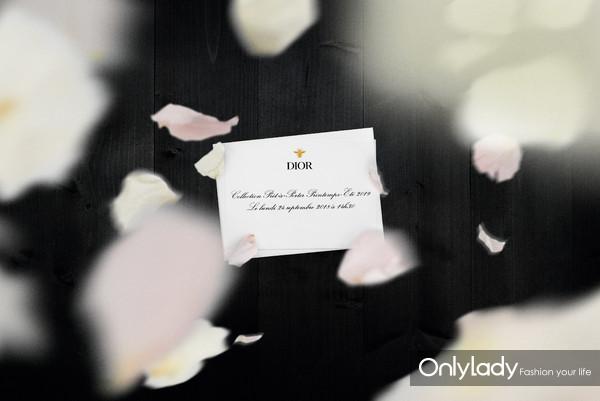 Dior在花瓣雨中动人舞蹈,王子文和Angelababy都赞不绝