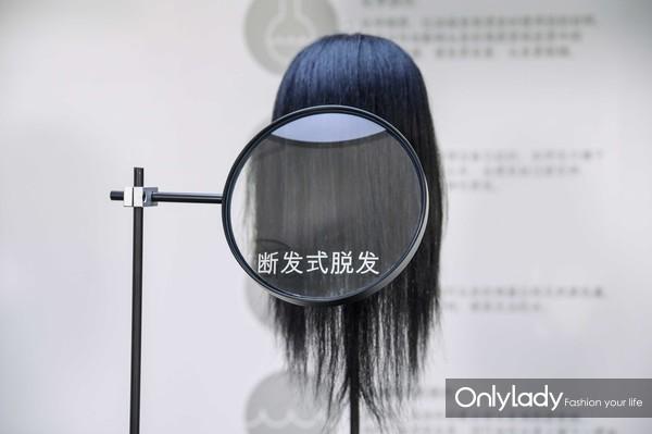 模拟四大头发问题:断发式脱发