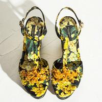 Dolce&Gabbana 含羞草印花锦缎黑色坡跟鞋