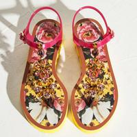 Dolce&Gabbana 牡丹印花钉珠夹趾凉鞋