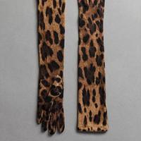 杜嘉班纳 豹纹羊绒长款手套