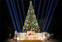 卡地亚点亮冬日浪漫 开启申城圣诞季