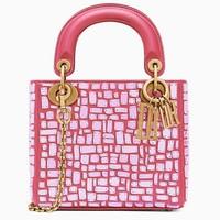 迪奥Dior 马赛克刺绣袖珍手提包