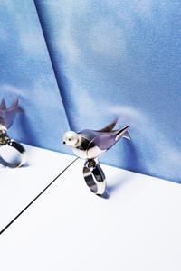 小鸟猫咪来作伴 Dior 2013秋冬配饰系列