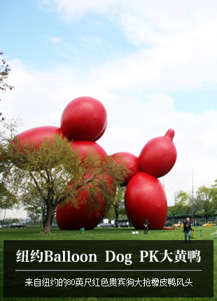 ��ŦԼBalloon Dog PK���Ѽ